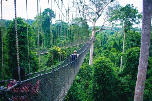 Canopy of Kakum