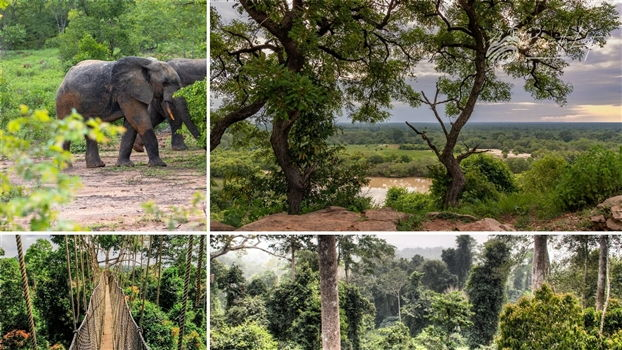 National Parks in Ghana you do not want to miss