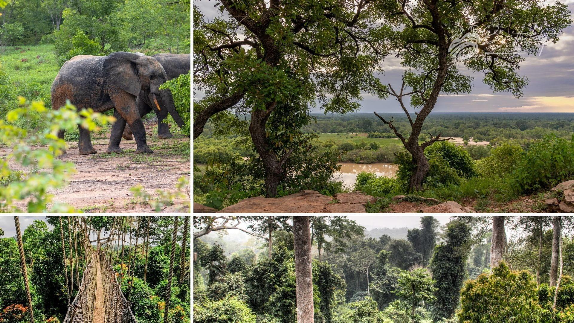 Ghana national parks
